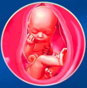 Мама и малыш на 37 неделе беременности