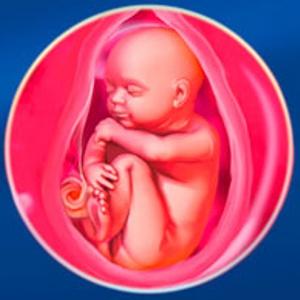 Мама и малыш на 38 неделе беременности