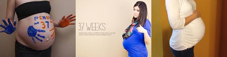 Фото на 37 недели беременности