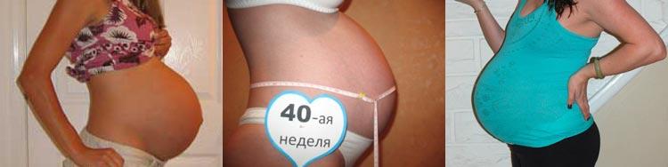 Живот мамы на 40 неделе беременности
