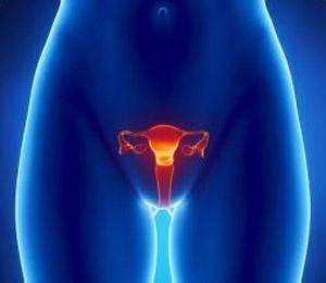 Эрозия шейки матки при беременности - Календарь беременности по неделям