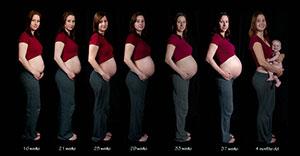 Почему увеличивается окружность живота во время беременности