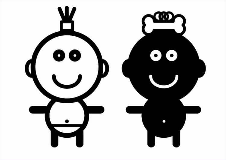 Когда начинать рассматривать детям черно-белые картинки животных